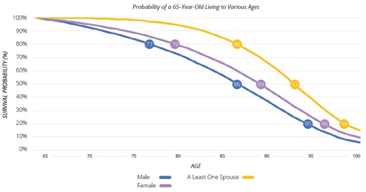 survival probability graph